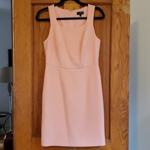 Pale Pink Sheath Dress